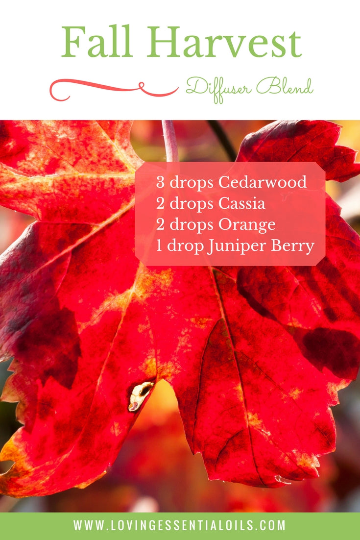 Fall Harvest - Diffuser Recipes For Fall