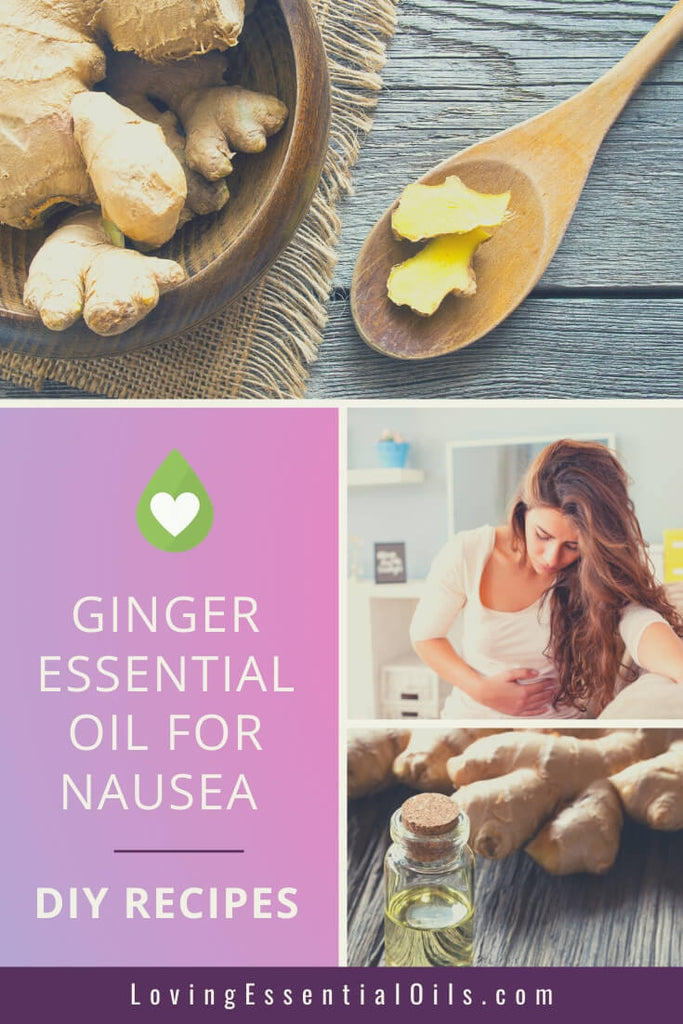 Ginger Essential Oil for Upset Stomach, Car Sickness, Vomiting, Nausea with DIY Essential Oil Blends & Recipes by Loving Essential Oils