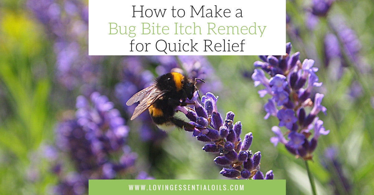 How to Make a Essential Oil Bug Bite Roller Blend Itch Remedy