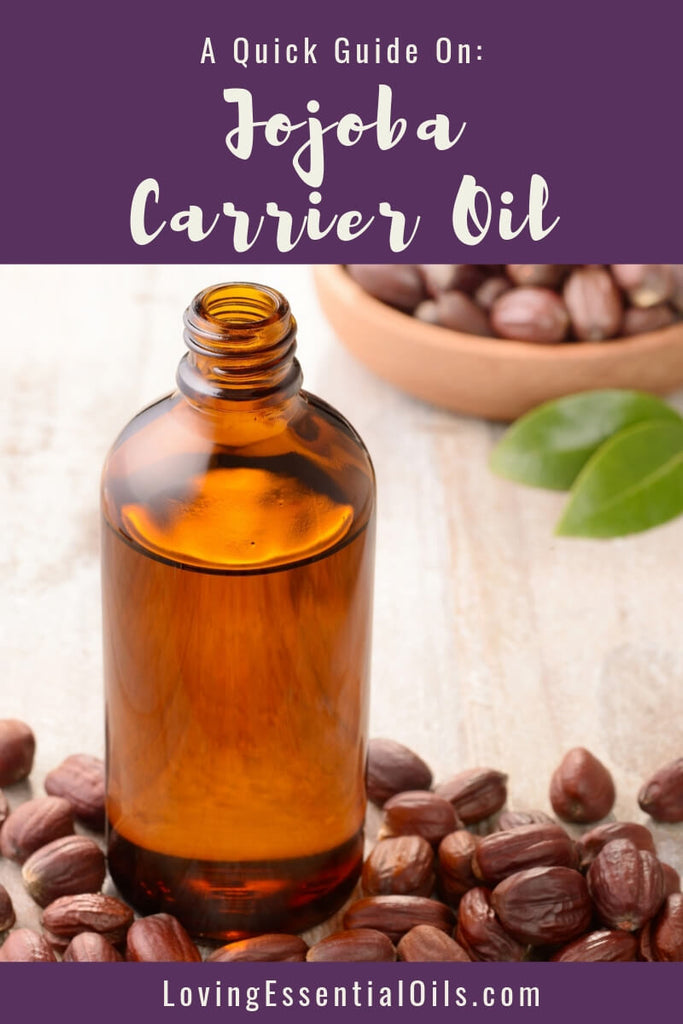 Jojoba Carrier Oil Benefits & Uses - A Quick Guide! by Loving Essential Oils