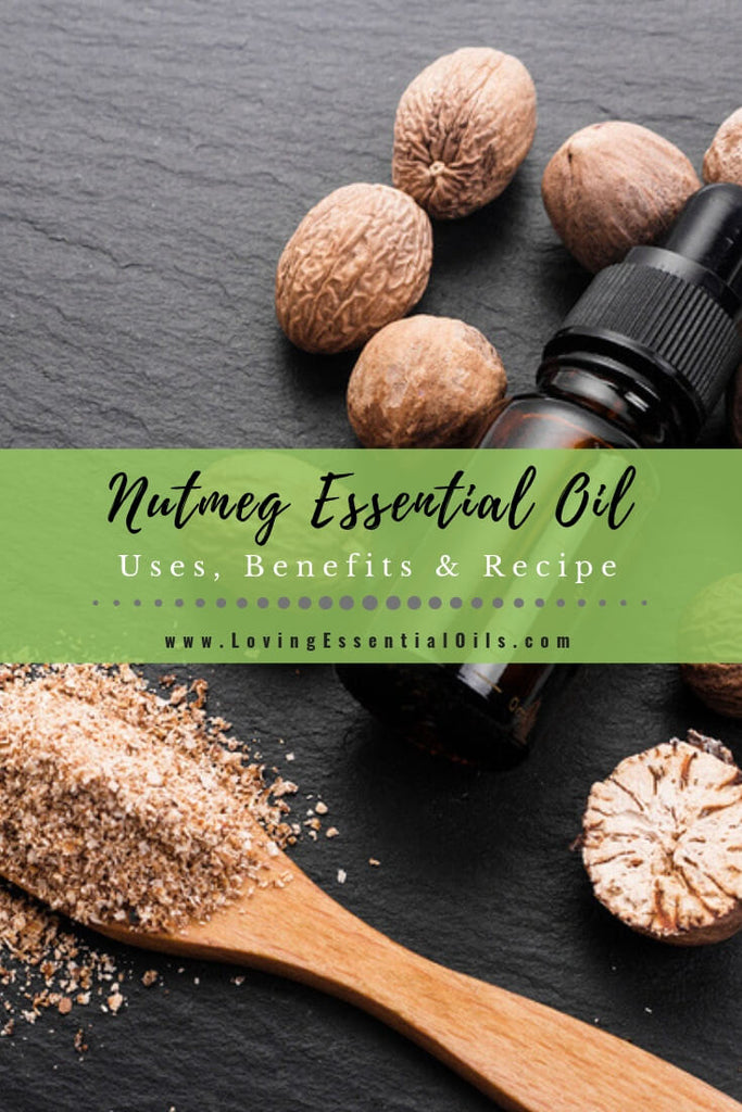 Nutmeg Essential Oil Uses, Benefits & Recipes by Loving Essential Oils