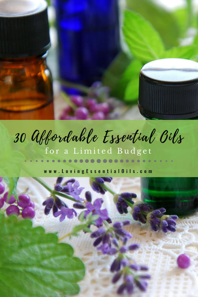 Top 30 Affordable Essential Oils for a Limited Budget by Loving Essential Oils | Find out what the cheapest essential oils are depsite the oil brand you buy from