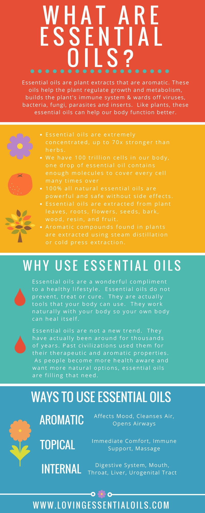 What Are Essential Oils Infographic