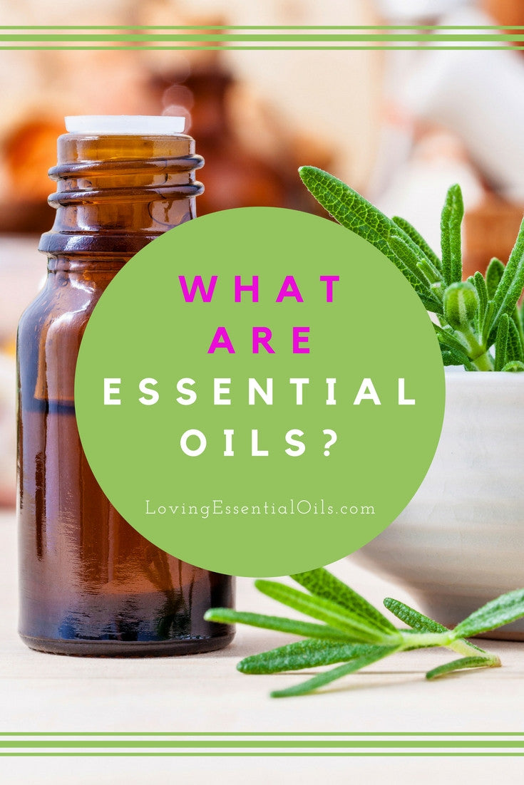 What Are Essential Oils & Why You Should Use Them