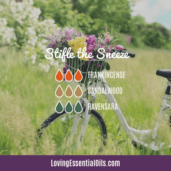 Allergy Essential Oil Blend - Stiffle the Sneeze by Loving Essential Oils with Frankincense, sandalwood, and ravensara
