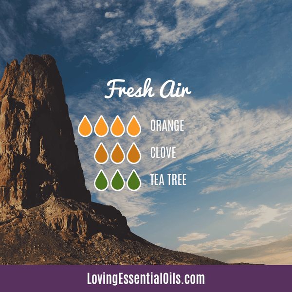 Antiviral Essential Oil Blends - Fresh Air Diffuser Recipe by Loving Essential Oils with orange, clove and tea tree