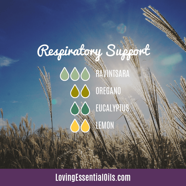 Antiviral Essential Oil for Congestion - Respiratory Support Diffuser Blend by Loving Essential Oils with ravintsara, oregano, eucalyptus, and lemon