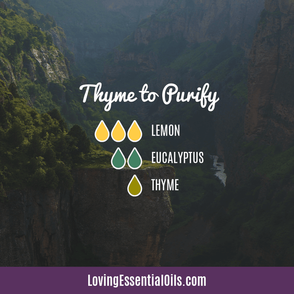 Antiviral Essential Oil Recipes - Thyme to Purify Diffuser Blend by Loving Essential Oil with lemon, eucalyptus, and thyme