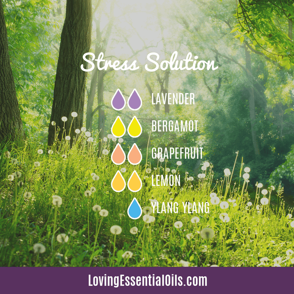 Aromatherapy Recipe for Emotions - Stress solution by Loving Essential Oils