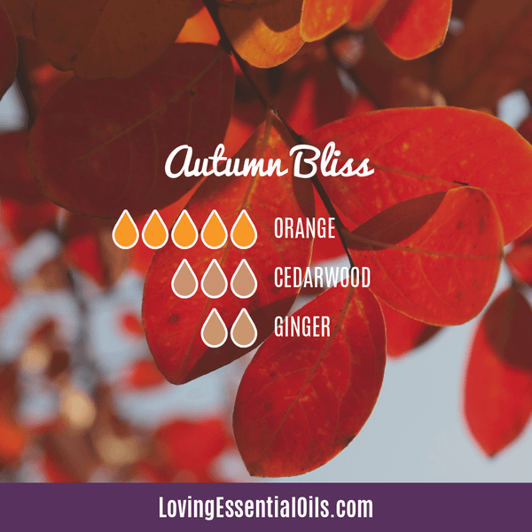 Autumn Bliss Diffuser Blend | How to Make Essential Oils Hand Soap by Loving Essential Oils