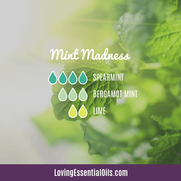 Bergamot Mint Essential Oil Blend - Mint Madness by Loving Essential Oils with spearmint and lime