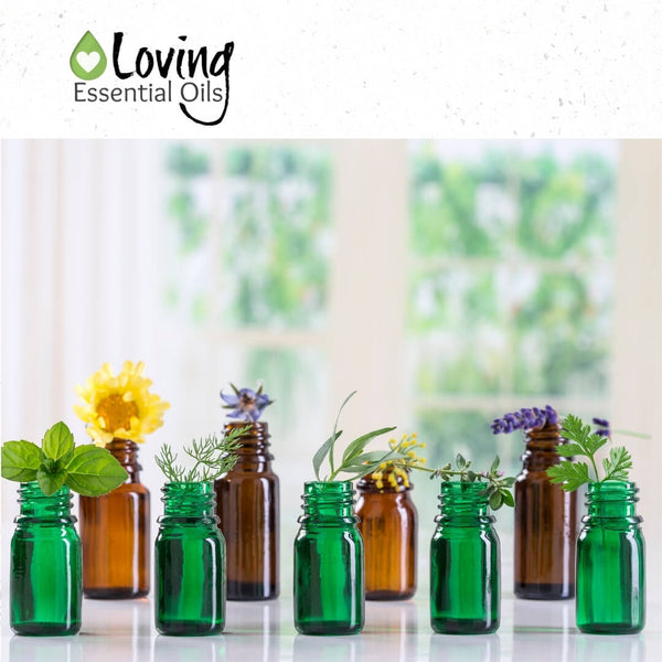 Best Priced Essential Oils to Invest In by Loving Essential Oils   Find out the top 30 essential oils that won't break your budget!