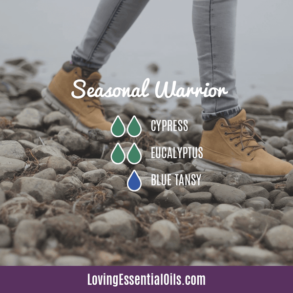 Blue Tansy Essential Oil Uses, Beneifts & Recipes - Seasonal Warrior Diffuser Blend by Loving Essential Oils