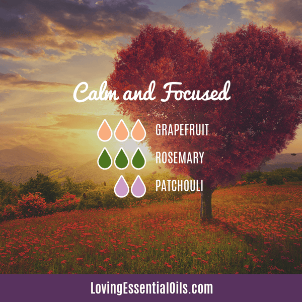 Calm and Focused Diffuser Blend by Loving Essential Oils