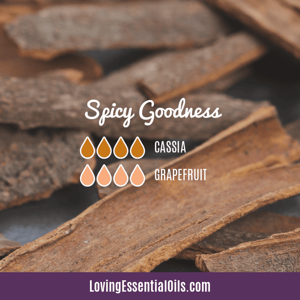 Cassia Essential Oil Uses, Benefits & Recipes - EO Spotlight by Loving Essential Oils | Cassia Diffuser Blends Spicy Goodness with cassia and grapefruit
