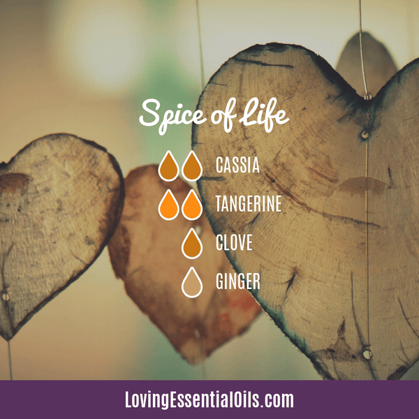 Cassia Essential Oil Uses, Benefits & Recipes - EO Spotlight by Loving Essential Oils | Cassia Diffuser Blends Spice of Life with cassia, tangerine, clove, and ginger