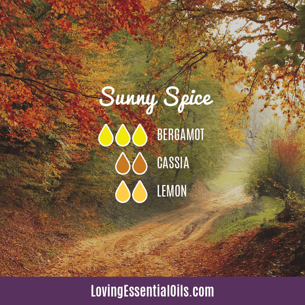 Cassia Essential Oil Uses, Benefits & Recipes - EO Spotlight by Loving Essential Oils | Cassia Diffuser Blends Sunny Spice with bergamot, cassia, and lemon
