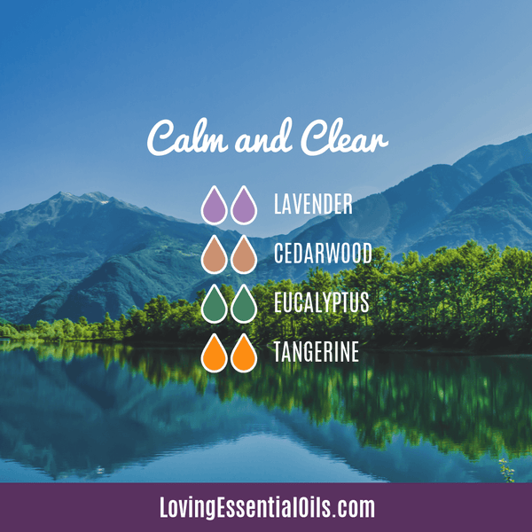 Cedarwood Diffuser Blend - Clear and Calm by Loving Essential Oils