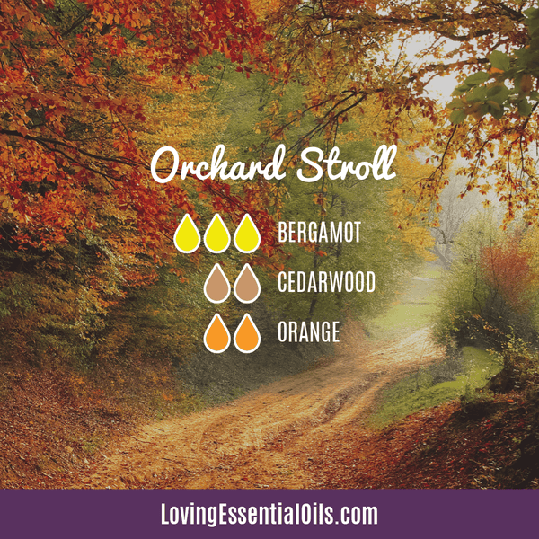 10 Cedarwood Diffuser Blends - Calm Stress and Gain Confidence by Loving Essential Oils | Orchard Stroll with bergamot, cedarwood, and orange