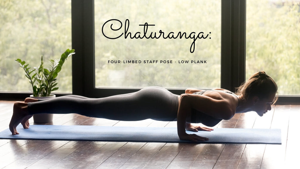Four-limbed staff pose; Low Plank. chaturanga yoga term