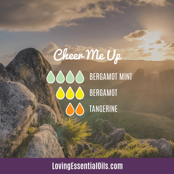Cheer Me Up Diffuser Blend by Loving Essential Oils with bergamot mint, bergamot, and tangerine