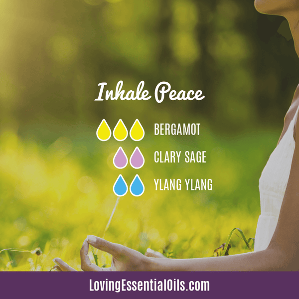 Diffuser Recipes with Clary Sage - Inhale Peace with bergamot, clary sage, and ylang ylang essential oil