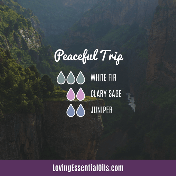 Essential Oil Diffuser Blends for Clary Sage - Peaceful Trip with white fir, clary sage, and juniper essential oil