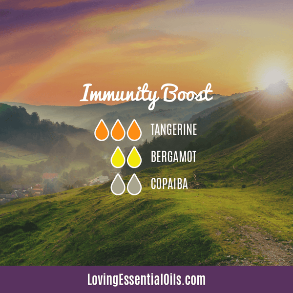 10 Copaiba Diffuser Blend Recipes by Loving Essential Oils | Immunity Boost with tangerine, bergamot, and copaiba