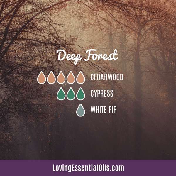 Diffuser Blend for Men - Deep Forest by Loving Essential Oils with cedarwood, cypress, and white fir