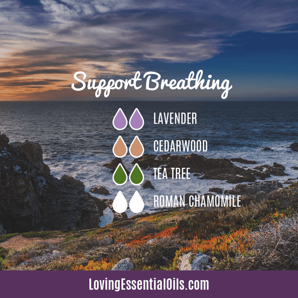 Diffuser Blends for Allergy Relief - Support Breathing by Loving Essential Oils with lavender, cedarwood, tea tree, and roman chamomile