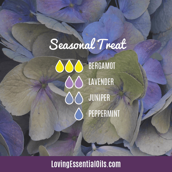 Diffuser Recipes for Allergies - Seasonal Treat by Loving Essential Oils with bergamot, lavender, juniper berry, and peppermint