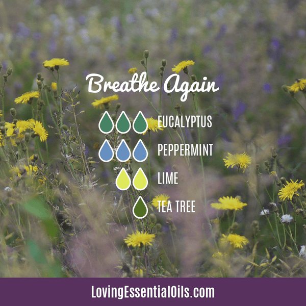 6 Benefits of Diffusing Peppermint Oil with Diffuser Blends by Loving Essential Oils | Breathe Again Diffuser Blend