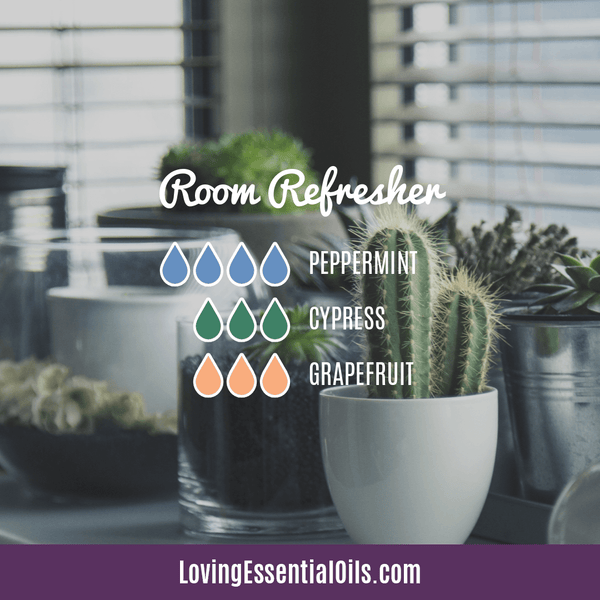 6 Benefits of Diffusing Peppermint Oil with Diffuser Blends by Loving Essential Oils | Room Refresher Diffuser Blend