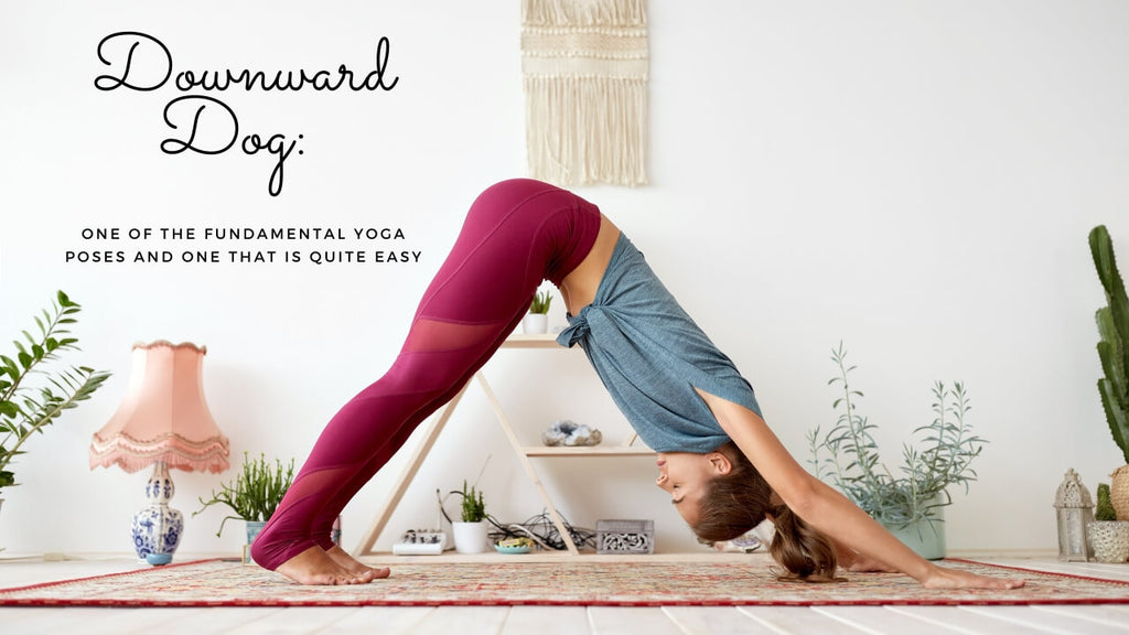 Downward Dog Yoga Term - This is one of the fundamental yoga poses and one that is quite easy.