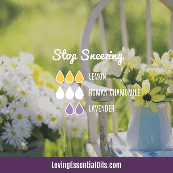 Essential Oil Blend for Allergies - Stop Sneezing by Loving Essential Oils with lemon, roman chamomile, and lavender