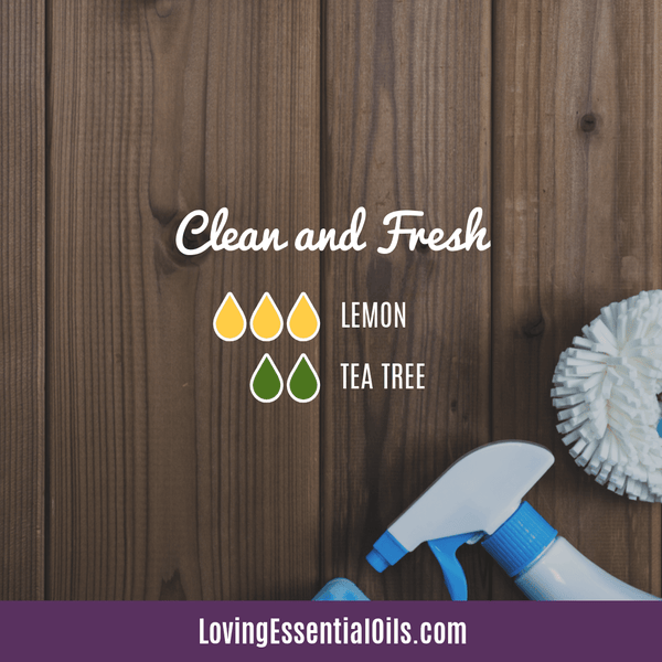 Essential oil blend for school - clean and fresh by Loving Essential Oils with lemon and tea tree