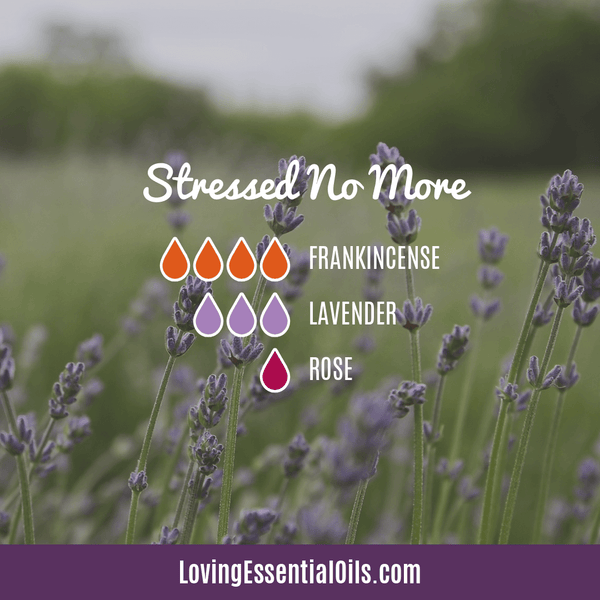 Essential Oil Blends for Stress and Anxiety - Stress No More with Frankincense, Lavender, and Rose by Loving Essential Oils