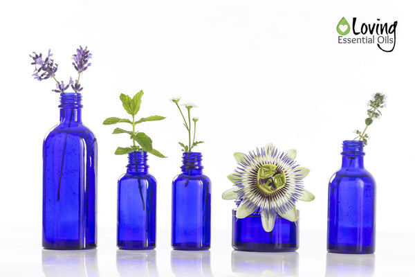 Eucalyptus Oil and Seizures - Essential Oil Bottles by Loving Essential Oils