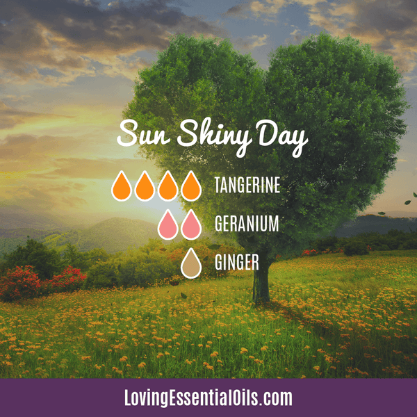 Sun Shiny Day Diffuser Blend - 12 Essential Oils Diffuser Benefits for Health & Wellness by Loving Essential Oils