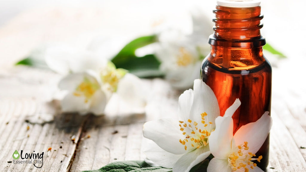 What Is An Essential Oil Absolute? - Oily FAQ by Loving Essential Oils