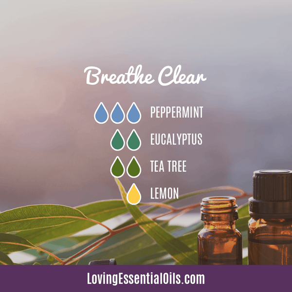 Eucalyptus Diffuser Blends - Relieve Fatigue & Open Airways! by Loving Essential Oils | Breathe Clear with pepermint, eucalyptus, tea tree, and lemon essential oil