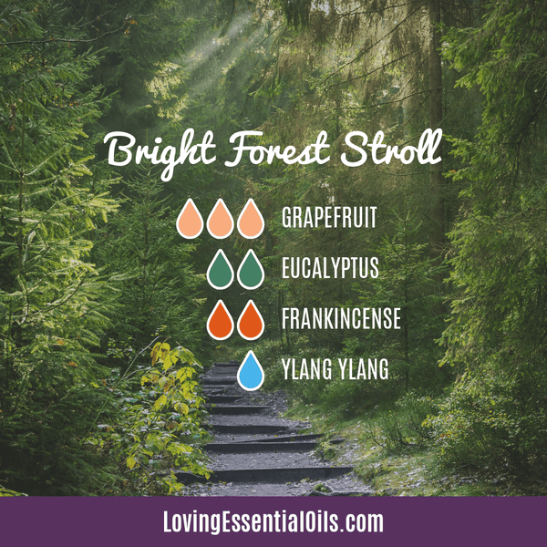 Eucalyptus Diffuser Blends - Relieve Fatigue & Open Airways! by Loving Essential Oils | Bright Forest Stroll with grapefruit, eucalyptus, frankincense, and ylang ylang essential oil
