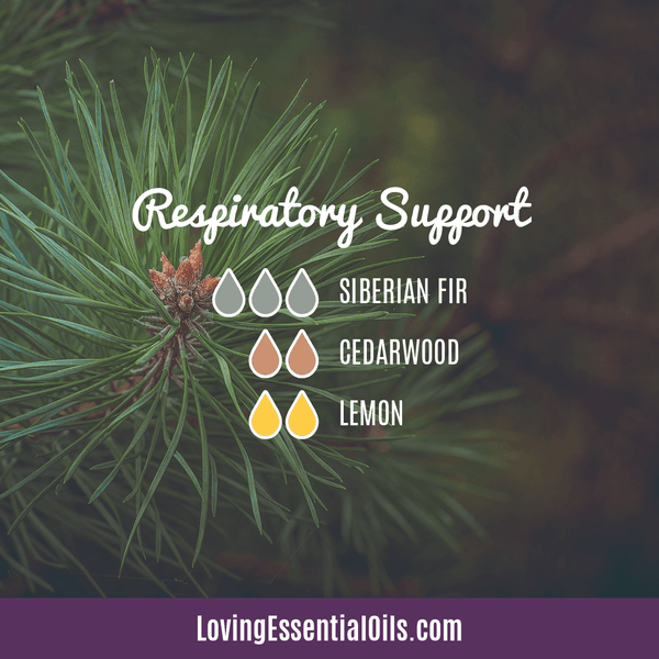 Evergreen Essential Oil Benefits - Respiratory Support cold & Flue Diffuser Blend