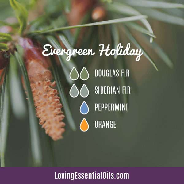 Evergreen Essential Oil Diffuser Blends - Evergreen Holiday with douglas fir, siberian fir, peppermint, and orange