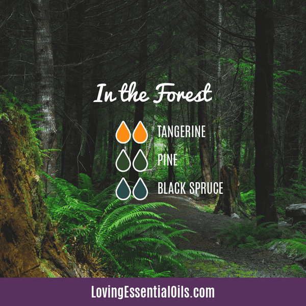 Evergreen Essential Oil Diffuser Recipes - In the Forest Blend