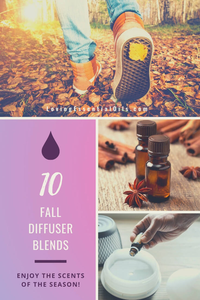 10 Fall Essential Oil Diffuser Blends - Wonderful Autumn Scents of the Season! by Loving Essential Oils