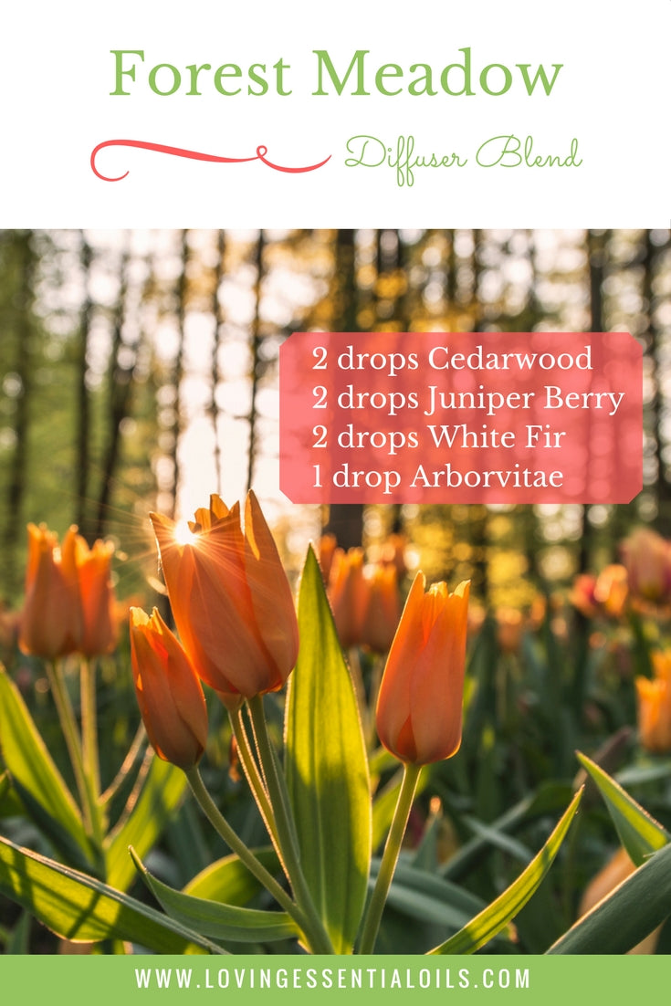 Forest Meadow Essential Oil Diffuser Blend