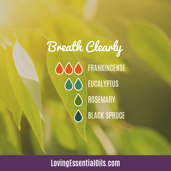 10 Frankincense Diffuser Blends for Health & Wellness by Loving Essential Oils | Breathe Clearly with frankincense, eucalyptus, rosemary, and black spruce