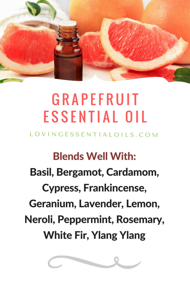 Grapefruit Essential Oil Uses, Benefits & Recipes EO Spotlight - Blends Well With - by Loving Essential Oils