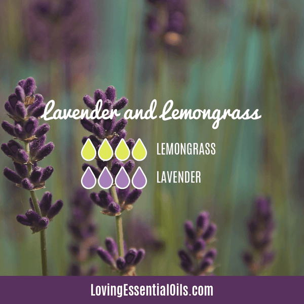 Lavender and Lemongrass Diffuser Blends by Loving Essential Oils